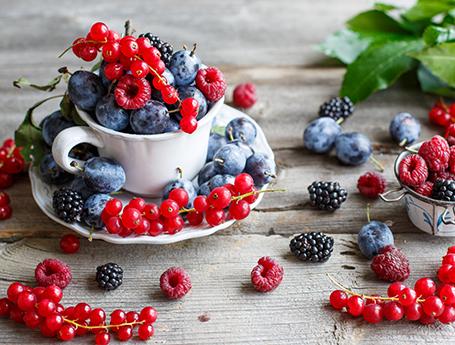 Плодовые кустарники